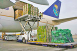 Air freight quote